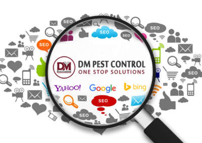 First page ranking results – DM Pest Control